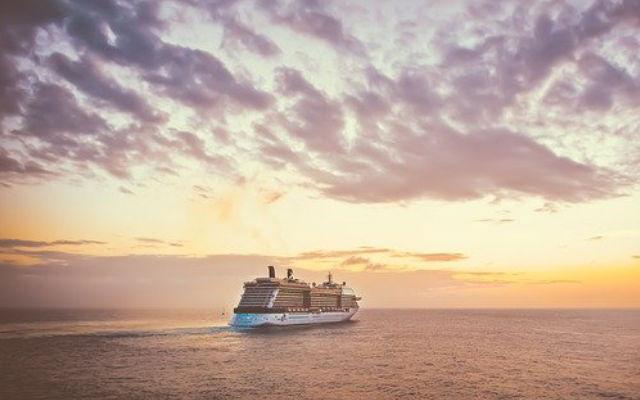 Cruise ship out at sea